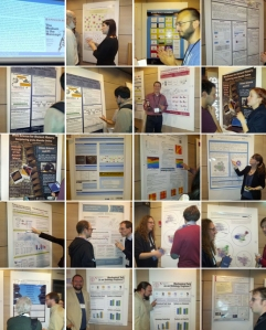 websci2013-posters